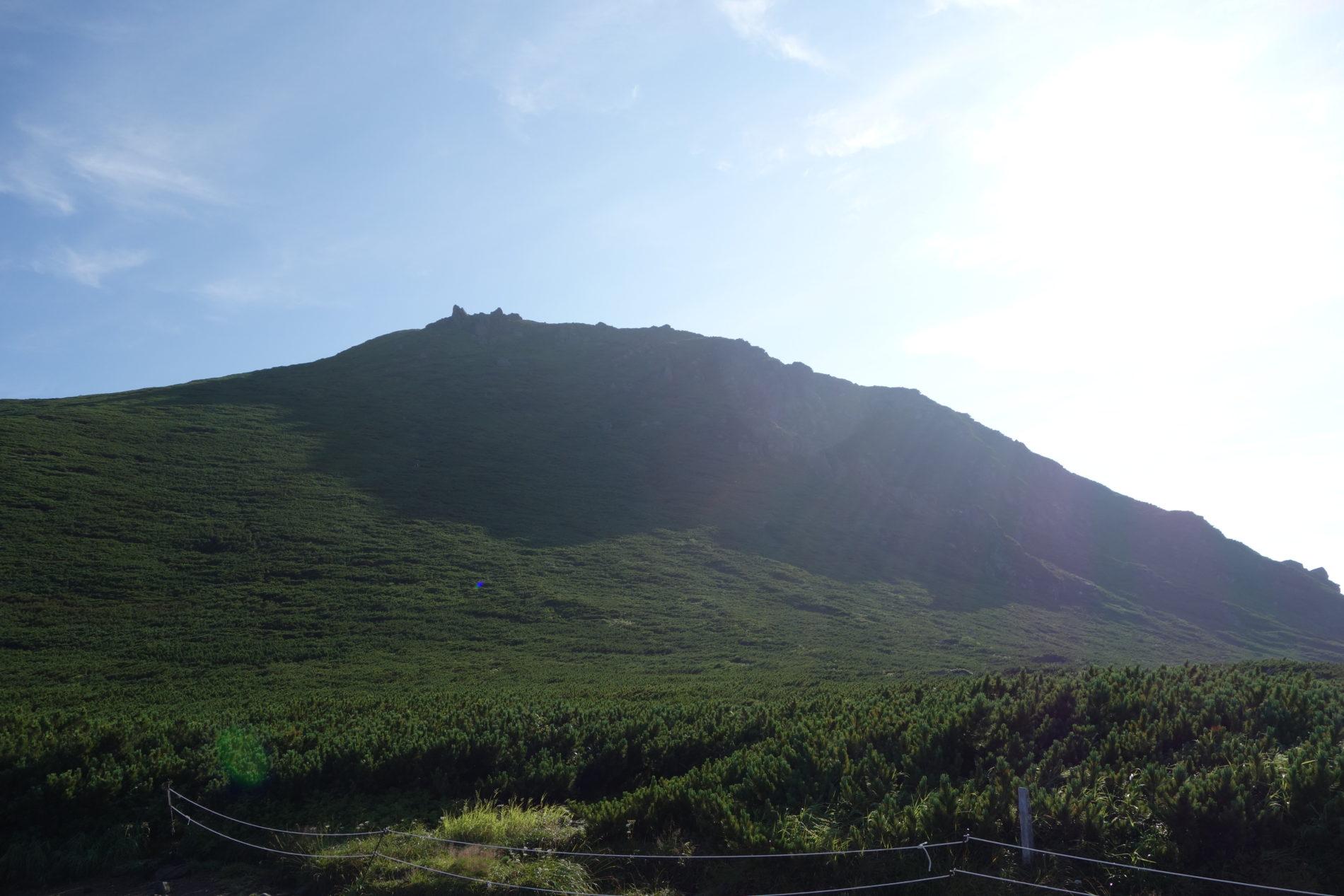 羅臼岳 羅臼平〜山頂