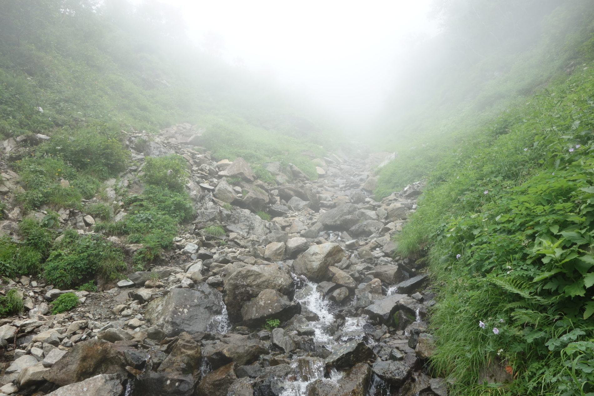 幌尻岳 ポロジリ山荘〜幌尻岳山頂