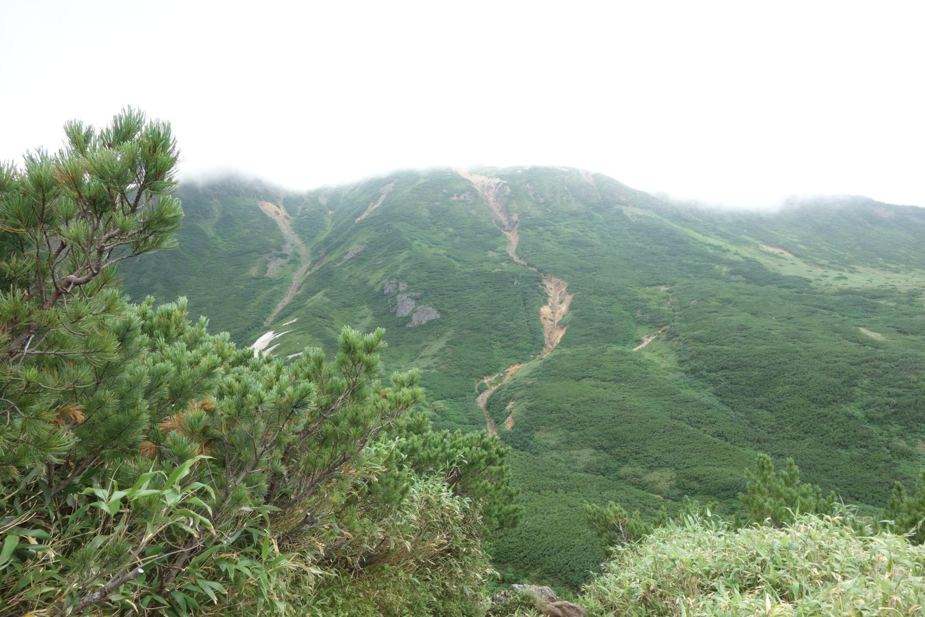 富良野岳〜下山