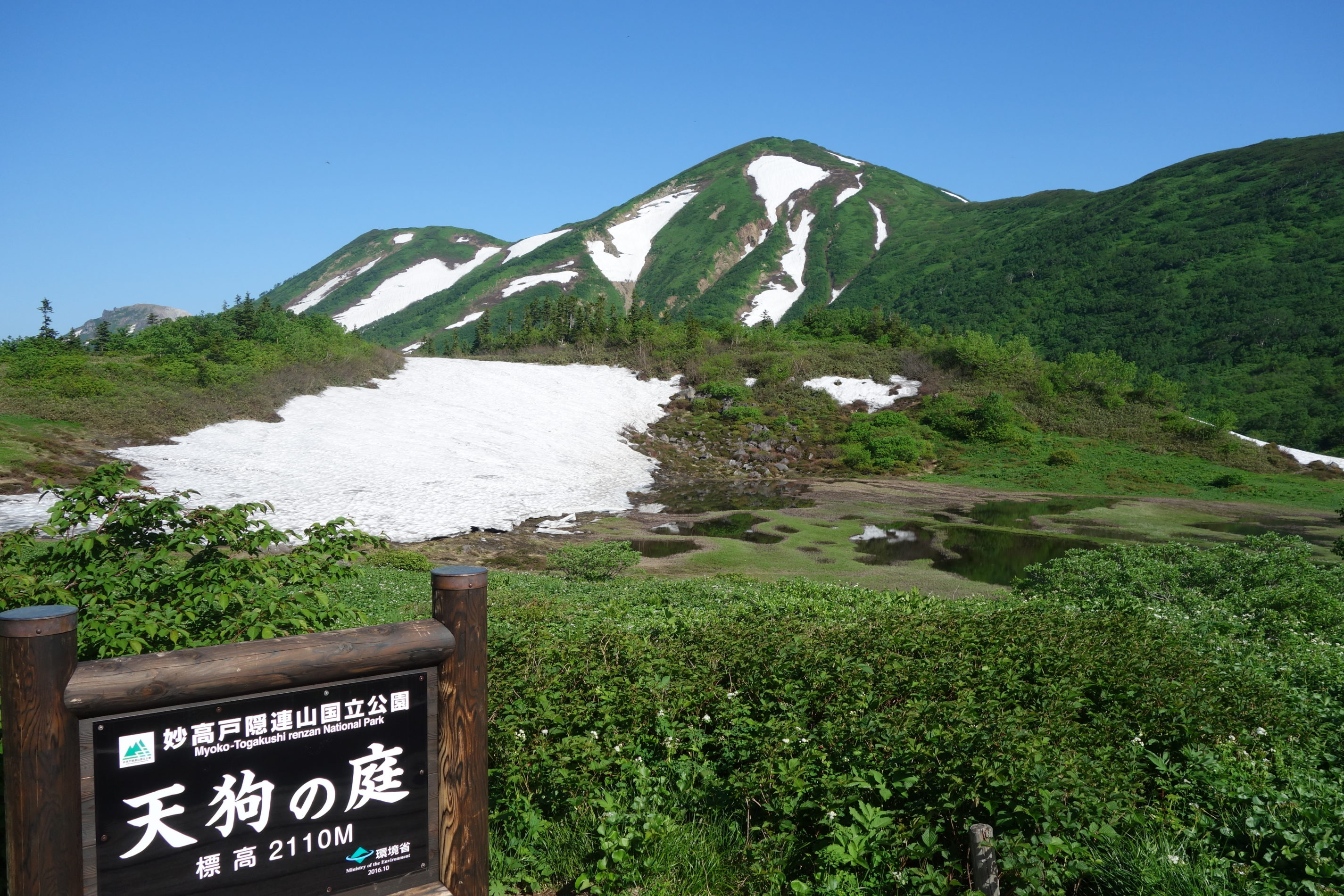 火打山 高谷池ヒュッテ〜火打山 山頂