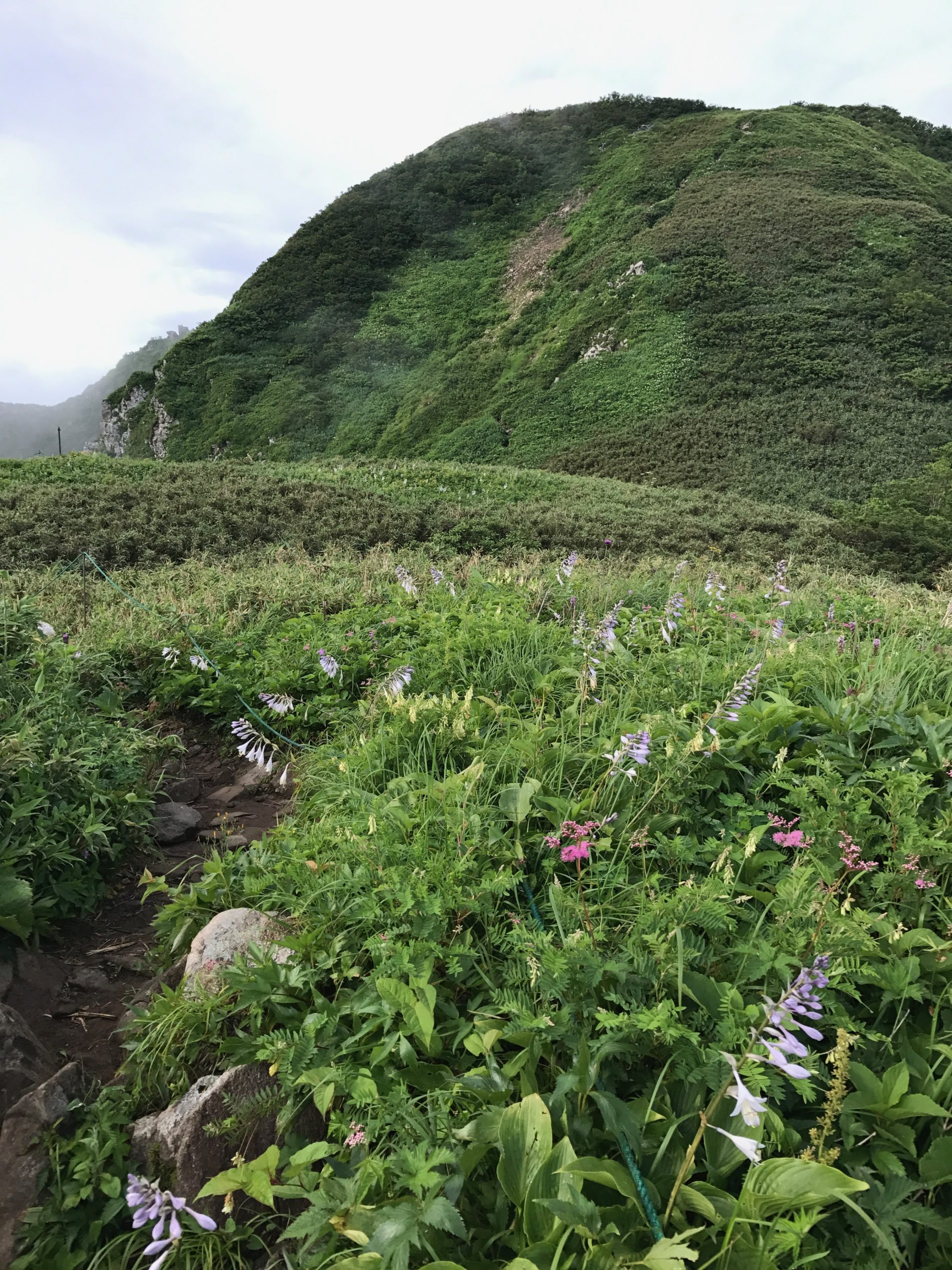 雨飾山 笹平〜雨飾山 山頂