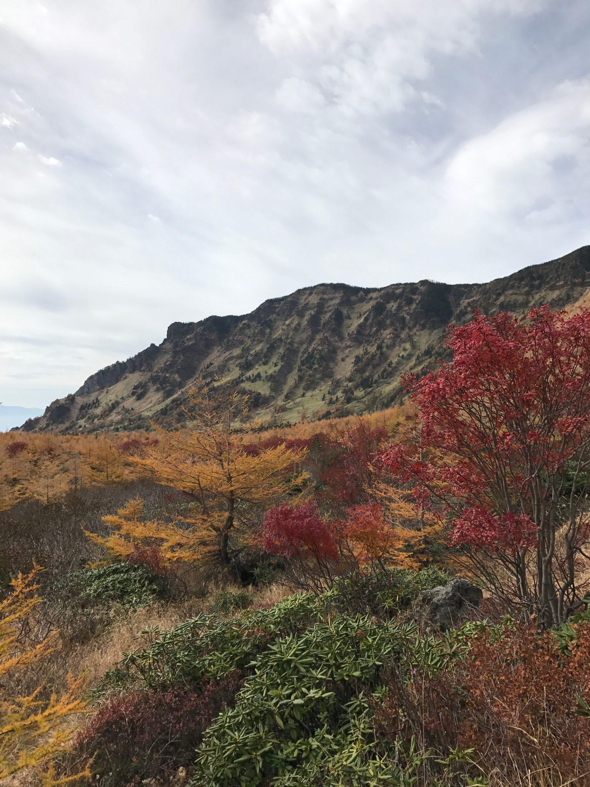 浅間山 仙人岳〜浅間山山麓〜車坂峠