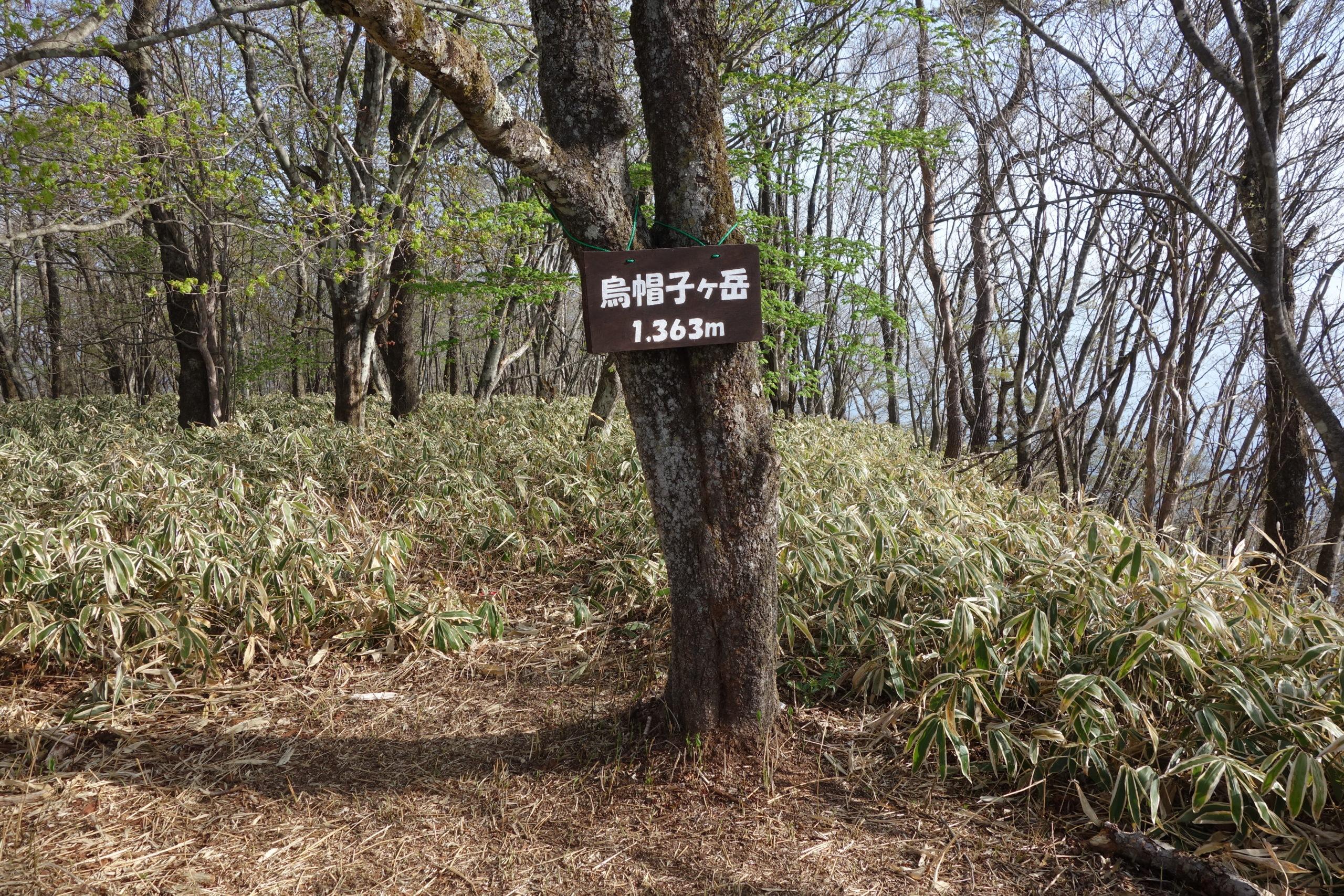 榛名湖一周 烏帽子ヶ岳登山口〜山頂