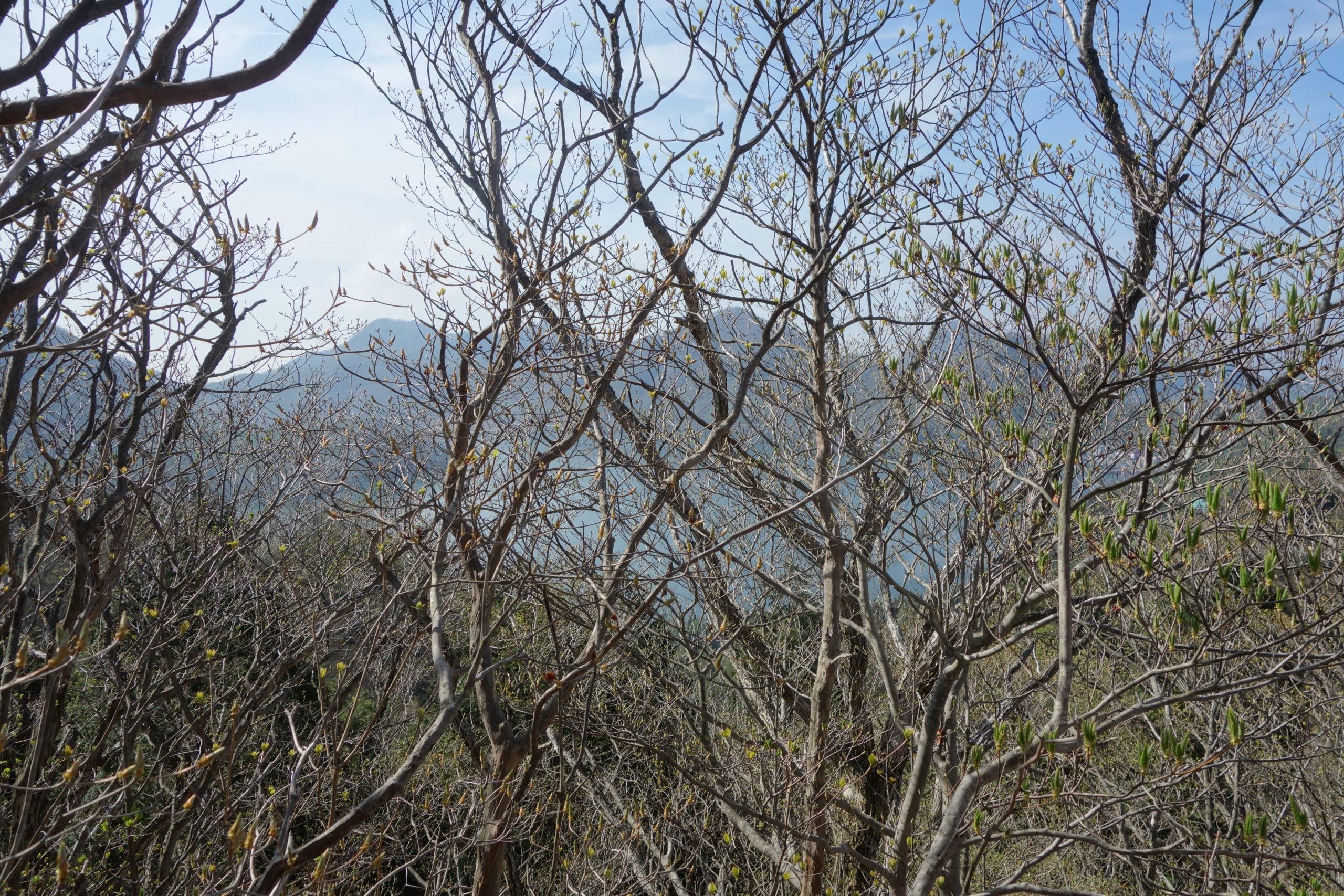 榛名湖一周 烏帽子ヶ岳山頂〜髪櫛山山頂〜掃部岳登山口