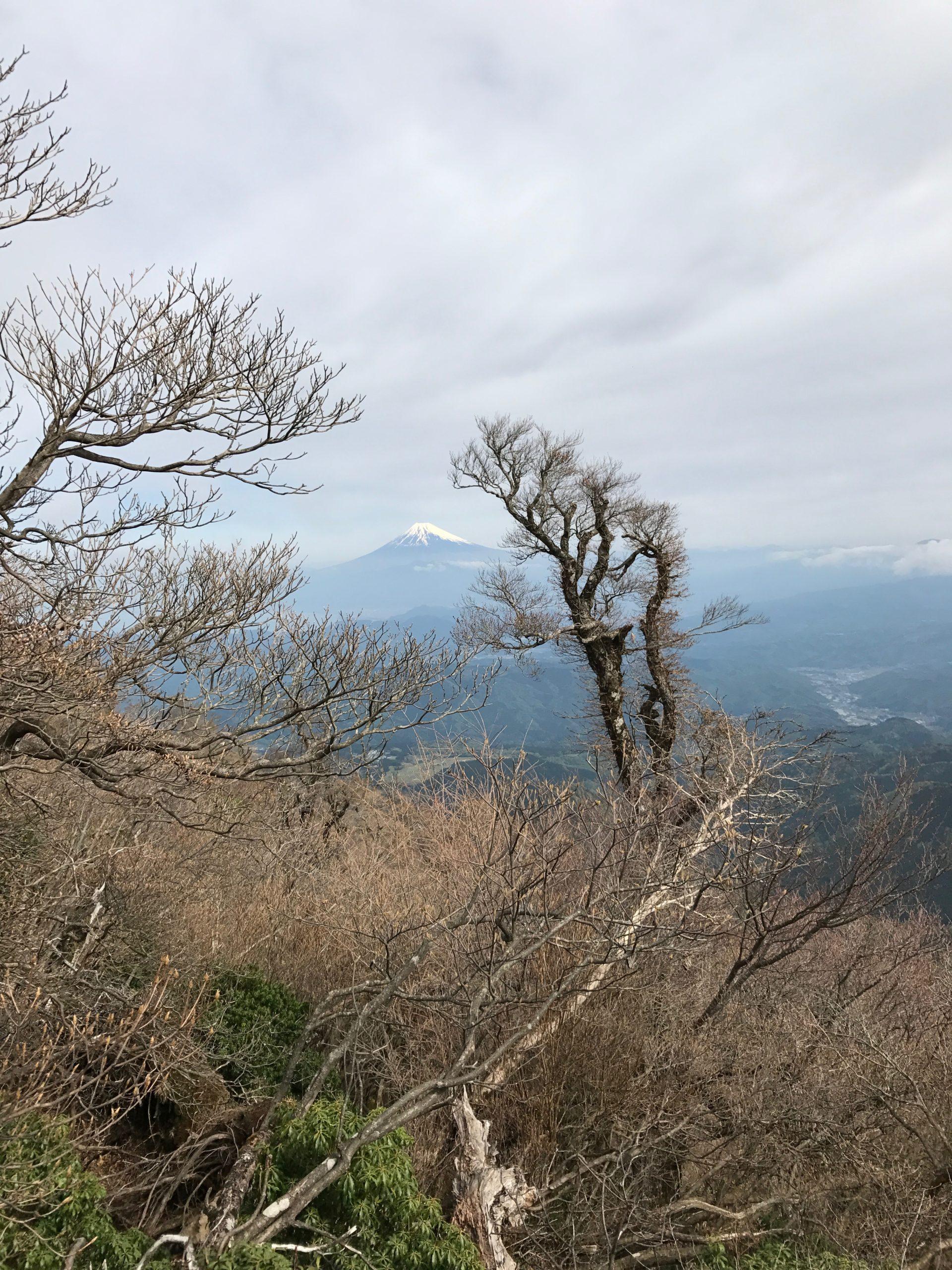 天城山 万三郎岳〜八丁池