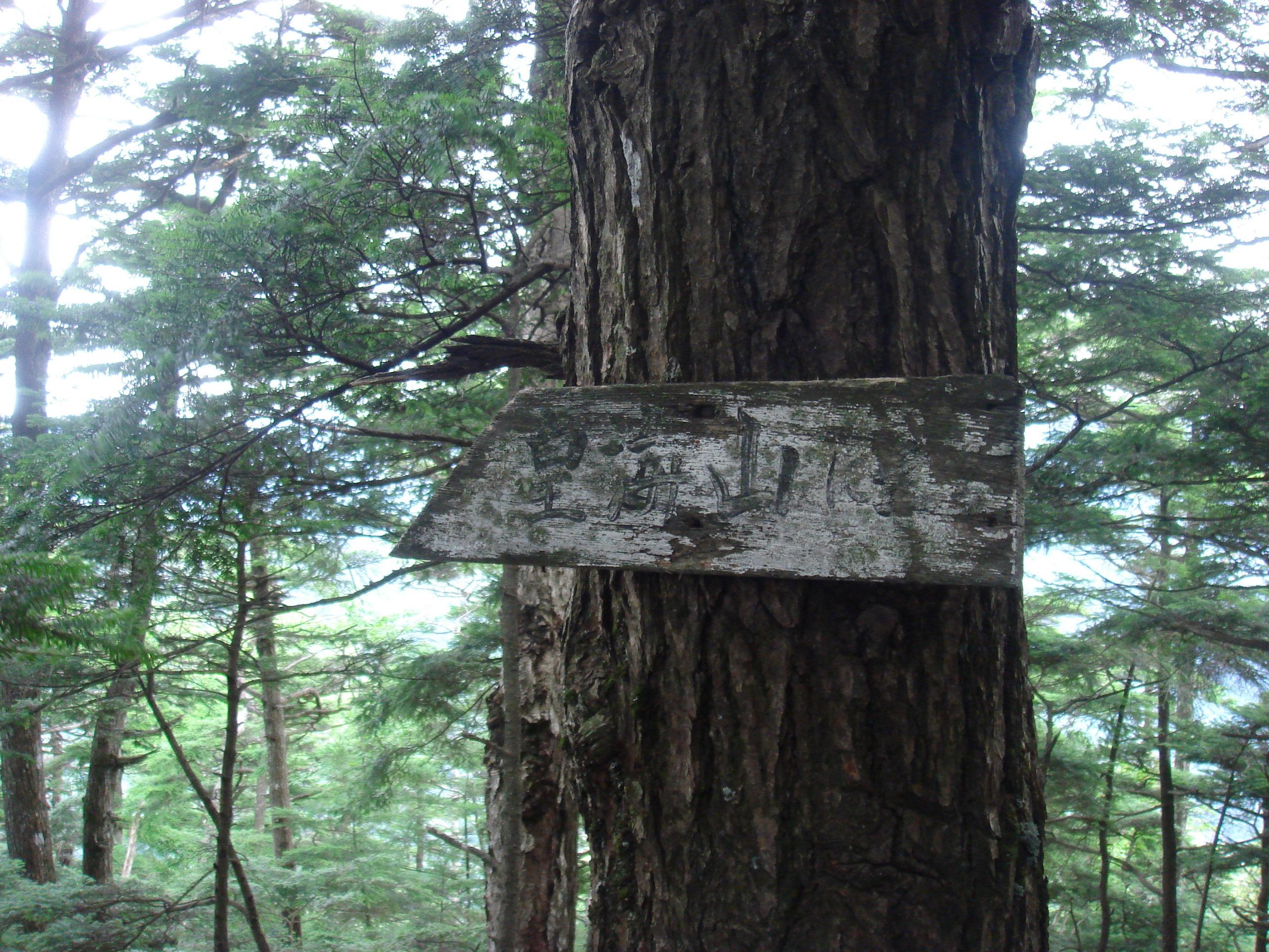 皇海山 銀山平駐車場〜庚申山〜駒掛山〜薬師岳