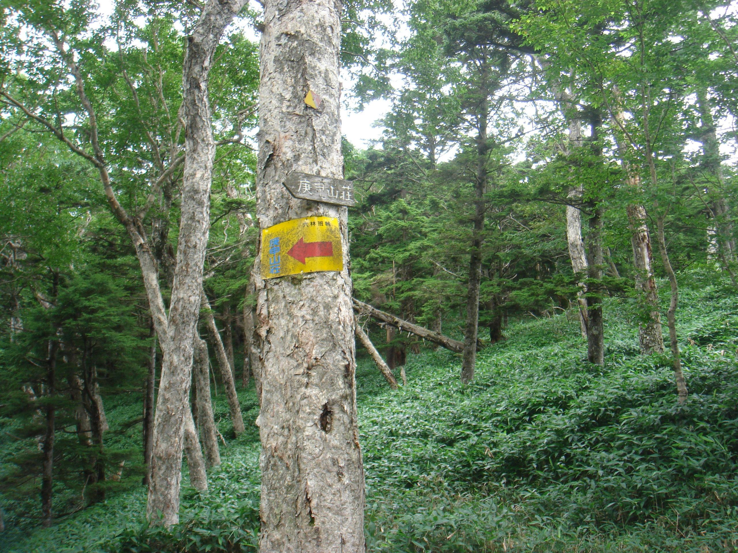 皇海山 皇海山山頂〜六班峠〜銀山平(下山)