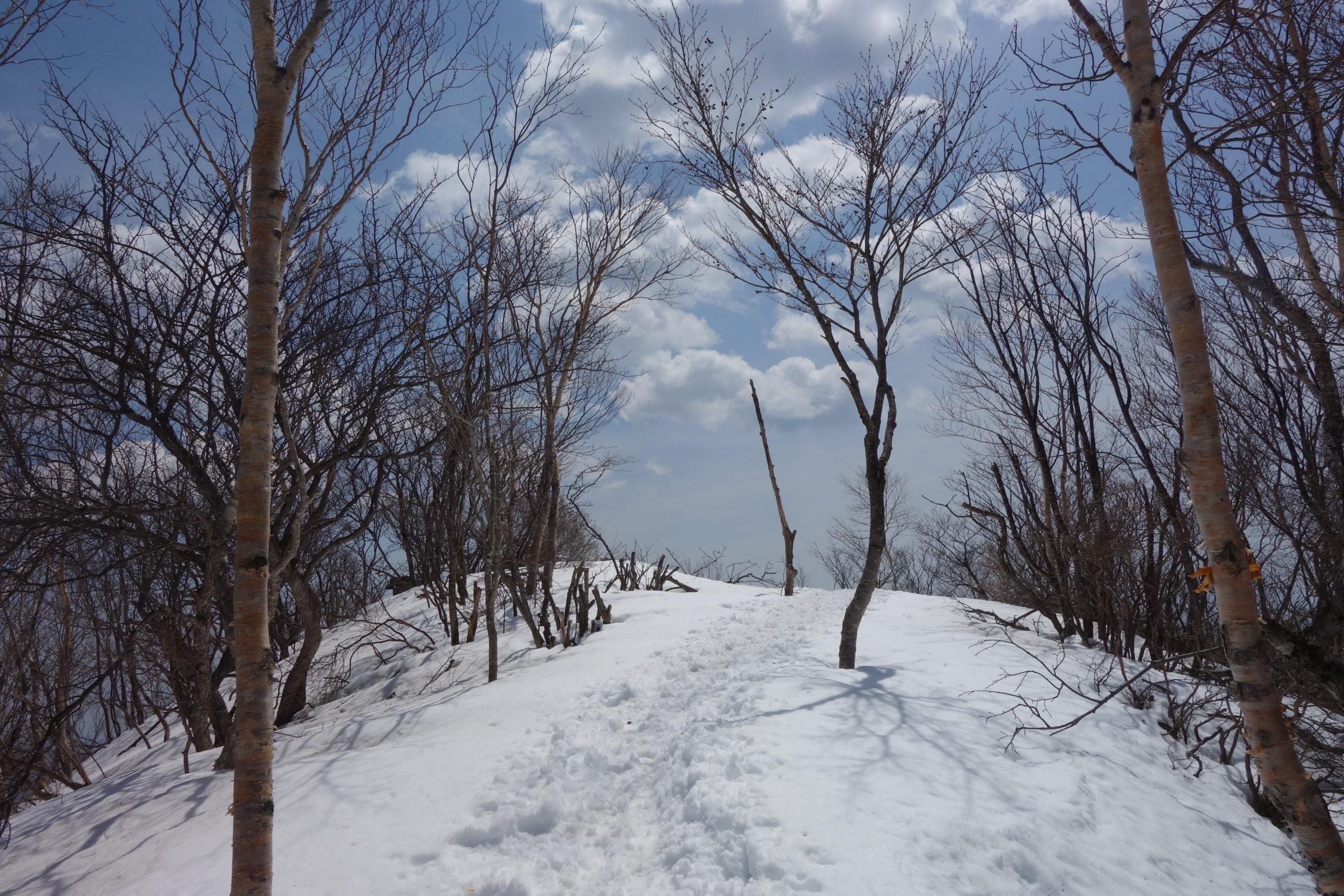 赤城山 黒檜山〜赤城神社