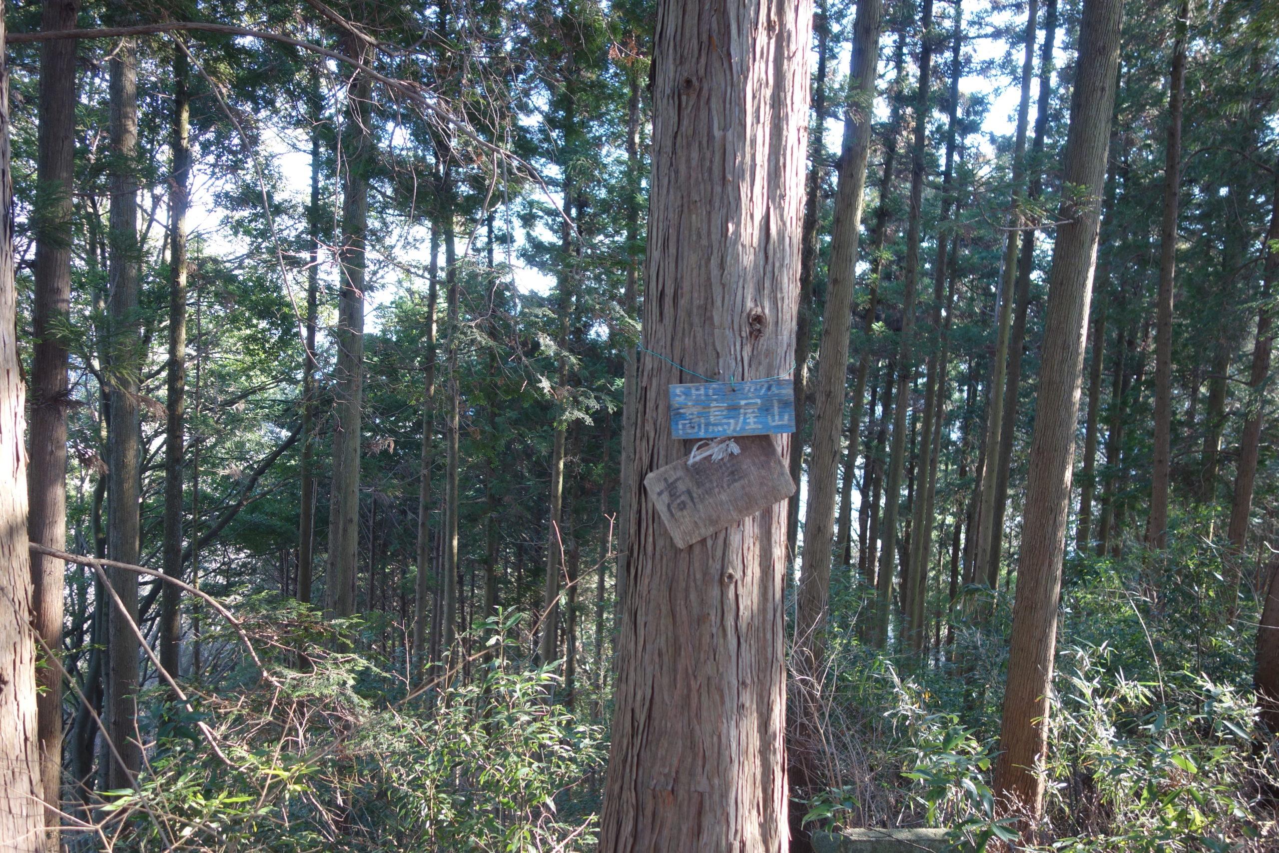 出会いの森キャンプ場 高鳥屋山