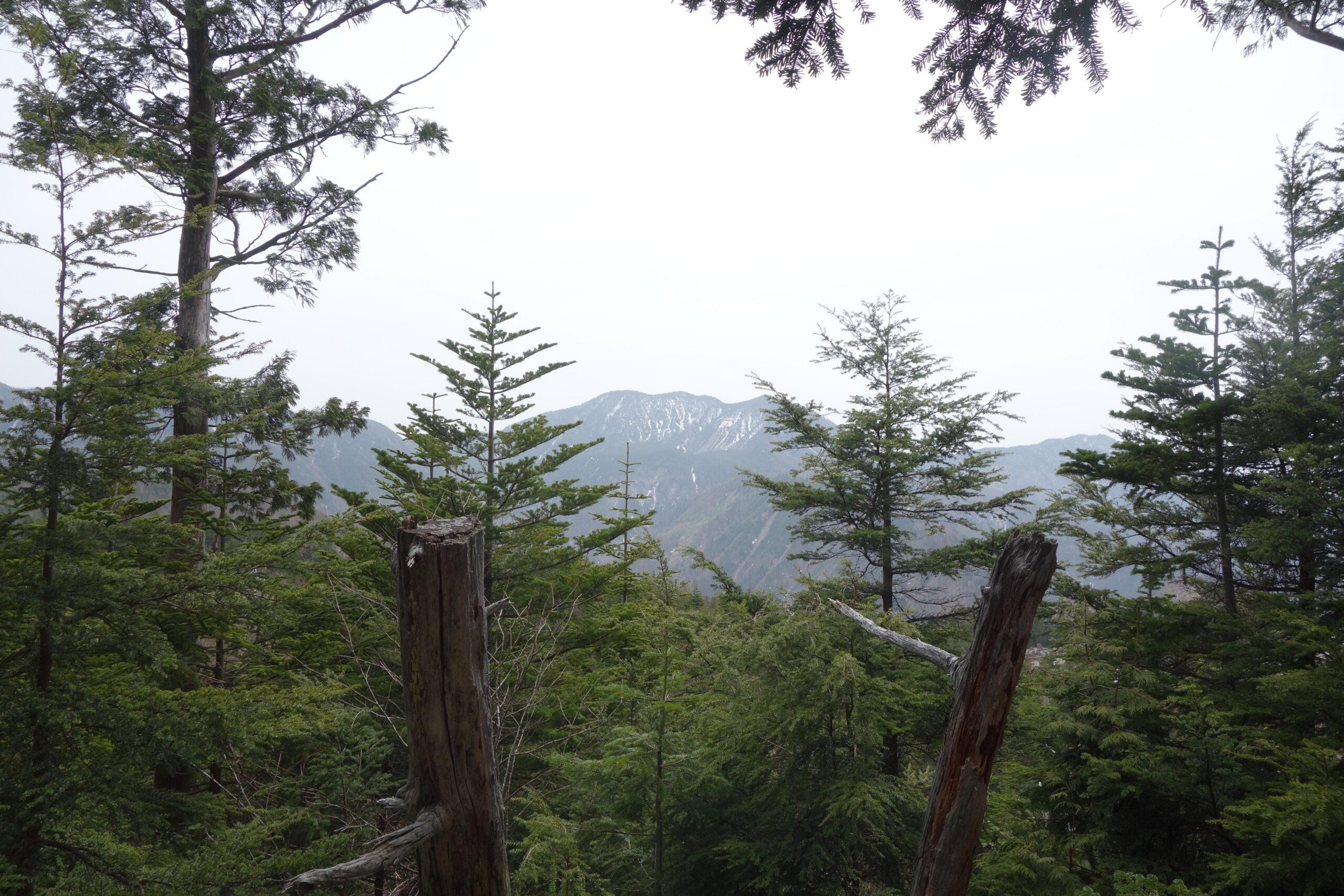 日光白根山 山頂散策〜下山