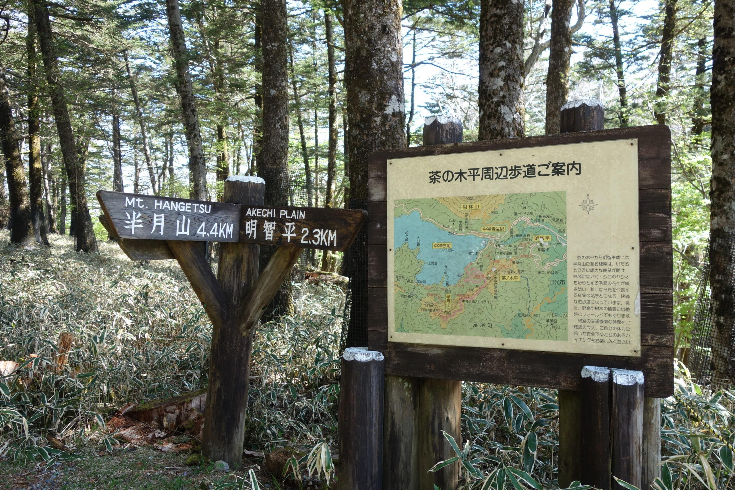 半月山 茶ノ木平〜半月山山頂