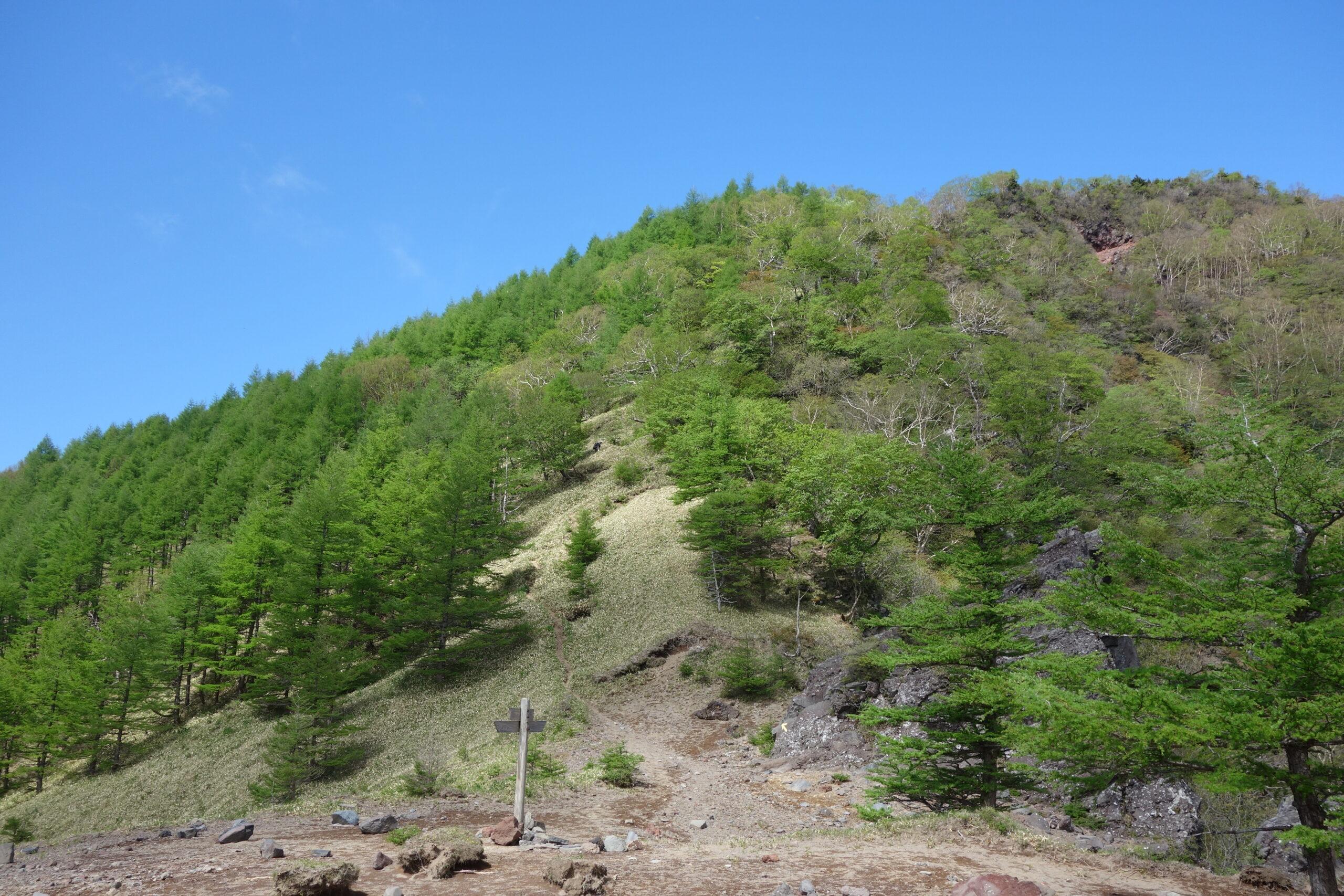 女峰山 滝尾神社登山口〜黒岩